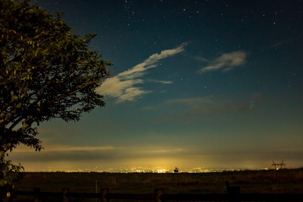 2020年8月28日、信州たてしな 白樺高原の蓼科第二牧場から北東方向、夜の風景。佐久平の夜景に浮かぶ鹿のつがいのシルエット。