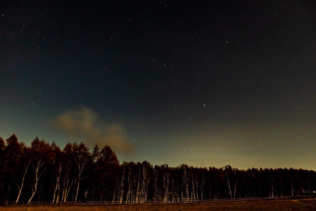 2020年10月30日、信州たてしな 白樺高原の蓼科第二牧場から北方向、夜の星空風景2。白樺林とその上空に輝く無数の星々。