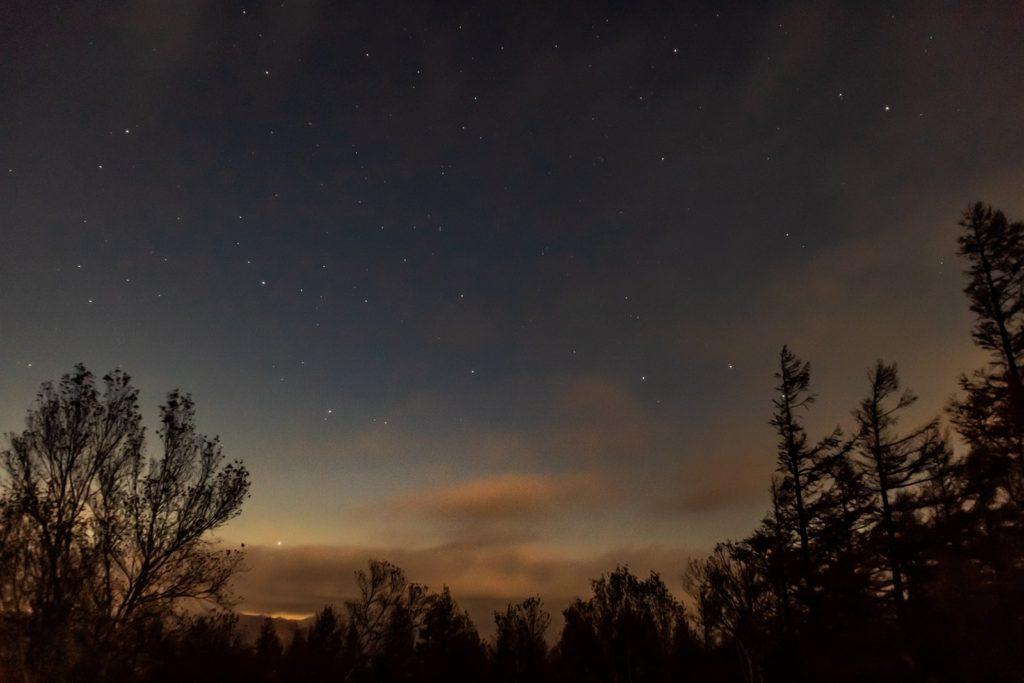 2020年10月29日、信州たてしな 白樺高原の蓼科第二牧場から北西方向、夜の星空風景。木々の上に拡がる星空。かんむり座などの星座が確認できる。