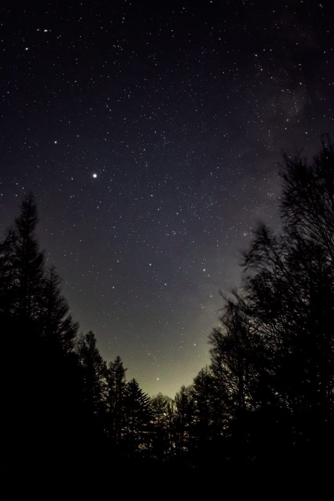 2020年11月5日、信州たてしな 白樺高原の蓼科山七合目登山口から南西方向、夜の星空風景2。V字型をした木々の谷間にすっぽりと収まって写った木星や土星といて座。
