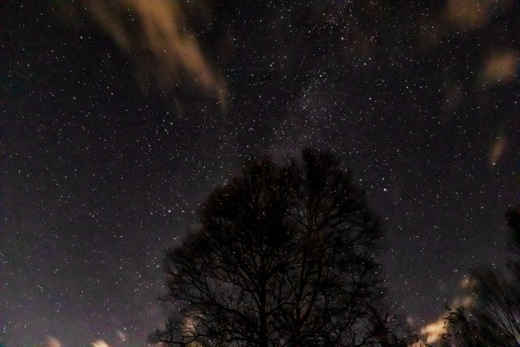 2020年11月6日、信州たてしな 白樺高原の蓼科第二牧場の上空、夜の星空風景。季節外れの彦星(アルタイル)と織姫(ベガ)とその間に流れる天の川に木を配置し橋をかけたイメージで撮影。