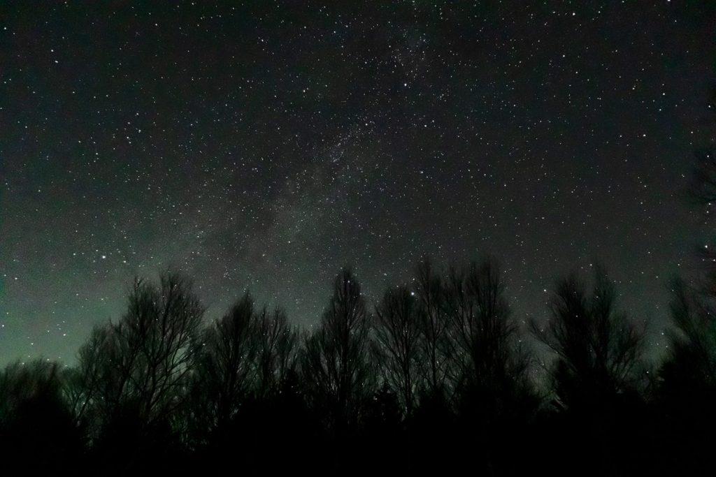 2020年11月17日、信州たてしな 白樺高原の蓼科第二牧場から西方向、夜の星空風景。白樺林の上にかかる天の川とアルタイル(彦星)、ベガ(織姫)、デネブの夏の大三角。
