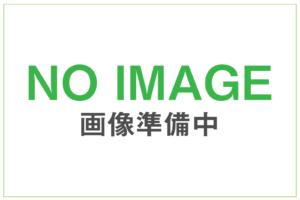 NO IMAGE 画像準備中