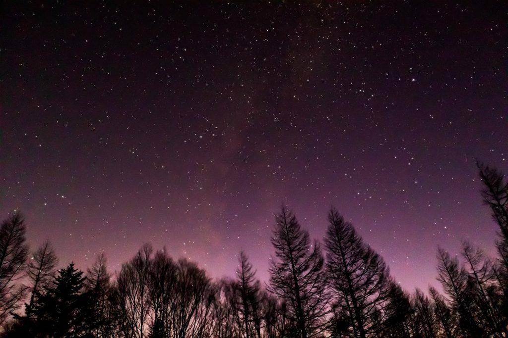 2020年12月3日、信州たてしな 白樺高原の蓼科山七合目登山口から西方向、夜の星空風景。天の川に隔てられたわし座のアルタイル(彦星)とこと座のベガ(織姫)が並んでいる。