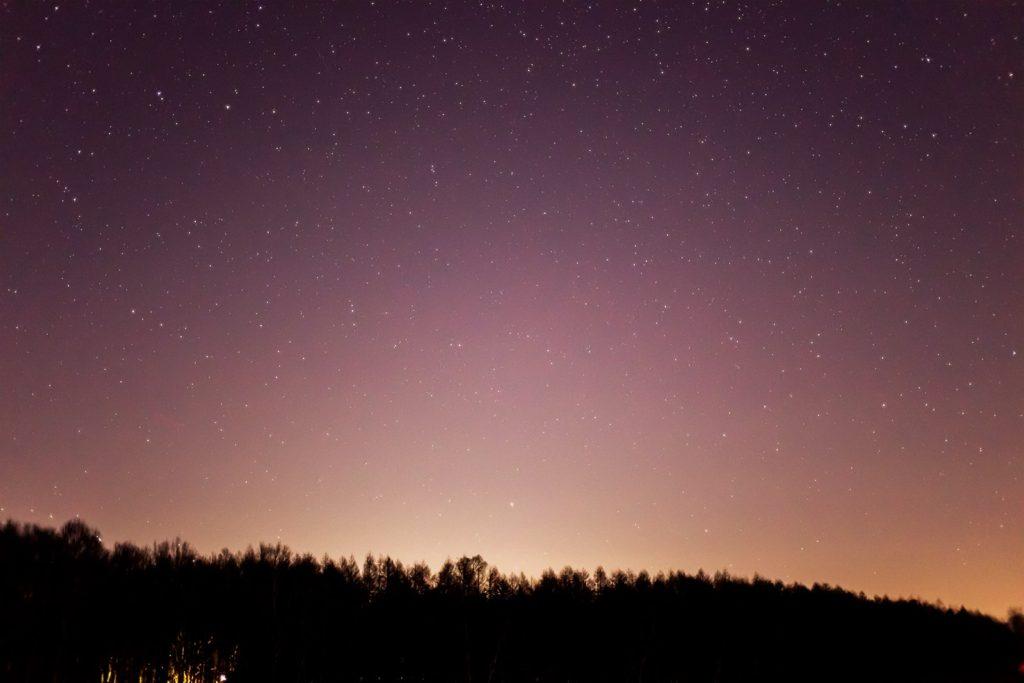 2020年12月6日、信州たてしな 白樺高原の蓼科第二牧場から北の方向、夜の星空風景。白樺林の上に無数の星が煌く。