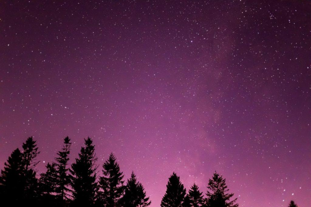 2020年12月6日、信州たてしな 白樺高原の蓼科第二牧場から南の方向、夜の星空風景。わし座やアルタイルのほか天の川もしっかりと肉眼で確認できる蓼科第二牧場の星空。