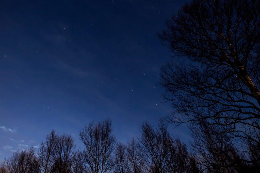 2020年12月29日、信州たてしな 白樺高原の蓼科第二牧場から北西方向、夜の星空風景。白樺林に沈みゆくはくちょう座