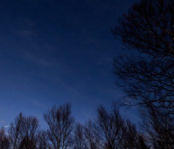 2020年12月29日、信州たてしな 白樺高原の蓼科第二牧場から北西方向、夜の星空風景