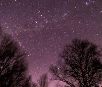 2021年1月4日、信州たてしな 白樺高原の蓼科第二牧場から、夜の星空風景