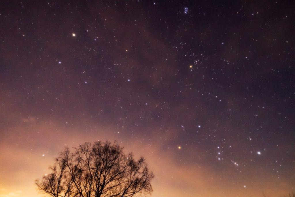 2021年1月8日、信州たてしな 白樺高原の三望台から南東方向、夜の星空風景。オリオン座のほかぎょしゃ座やおうし座、木の陰にはふたご座も見える