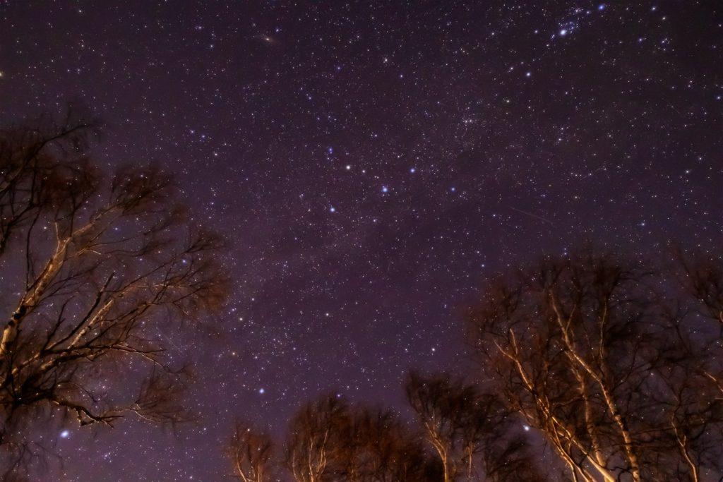 2021年1月9日、信州たてしな 白樺高原の蓼科第二牧場から、夜の星空風景。白樺林の上に輝く無数の星々からなる天の川。カシオペア座やアンドロメダ銀河も良く見える。