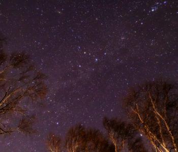 2021年1月9日、信州たてしな 白樺高原の蓼科第二牧場から、夜の星空風景