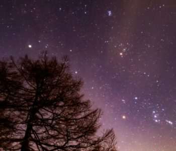 2021年1月19日、信州たてしな 白樺高原の蓼科第二牧場から、夜の星空風景