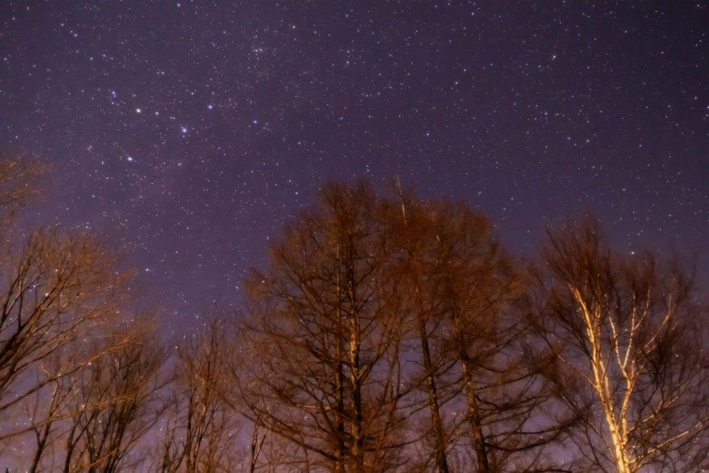 2021年1月21日、信州たてしな 白樺高原の夕陽の丘公園から、夜の星空風景。木々の上に光るカシオペヤ座と天の川